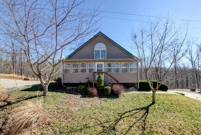 Dover Single Family Home For Sale: 133 Golden Eagle Dr