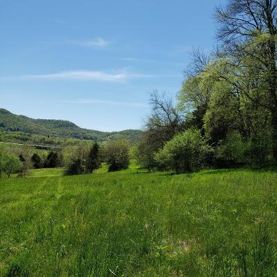 Dekalb County Residential Lots & Land For Sale: Liberty To Dismal