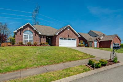 Spring Hill Single Family Home For Sale: 3005 Manchester Dr