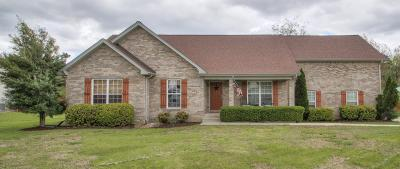 Mount Juliet Single Family Home For Sale: 556 Windy Rd