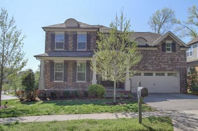 Nolensville Single Family Home For Sale: 190 Lodge Hall Rd