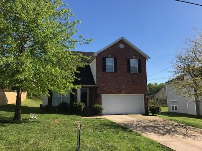 Lavergne Single Family Home For Sale: 7010 Zither Ln