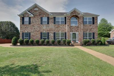 Franklin Single Family Home For Sale: 1735 Liberty Pike