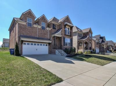 Goodlettsville Single Family Home For Sale: 418 Fall Creek Cir