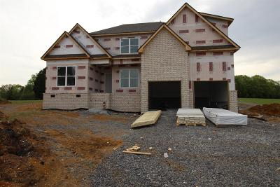 Rutherford County Single Family Home For Sale: 7133 Hwy 99 (Lot 3)