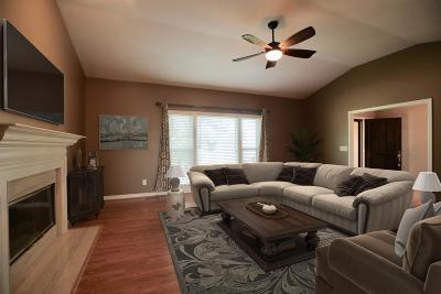 Goodlettsville Single Family Home Under Contract - Not Showing: 401 Buffalo Run
