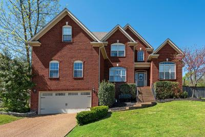 Hendersonville Single Family Home For Sale: 1081 Mansker Farm Blvd
