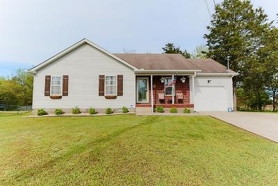 Smyrna Single Family Home For Sale: 513 Connie Ct