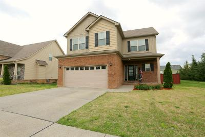 Spring Hill Single Family Home For Sale: 1079 Achiever Cir