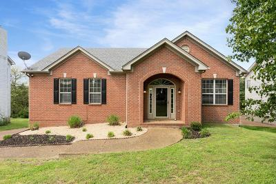 Sumner County Single Family Home For Sale: 122 Braxton Park Ln