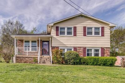 Hendersonville Single Family Home For Sale: 127 Dennis Rd