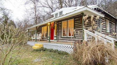 Nashville Single Family Home For Sale: 9045 Hwy 100