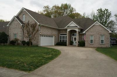 Clarksville Single Family Home For Sale: 958 Willow Cir
