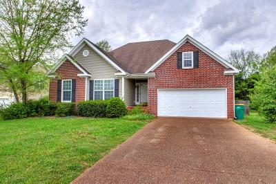 Spring Hill Single Family Home For Sale: 2857 Cochran Trace Dr