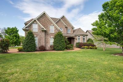 Spring Hill Single Family Home For Sale: 4030 Miles Johnson Pkwy