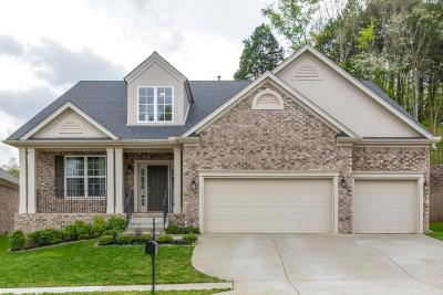 Nashville Single Family Home For Sale: 8533 Beautiful Valley Dr