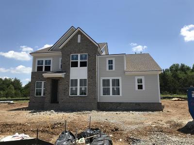 Mount Juliet Single Family Home For Sale: 513 Oakvale Ln