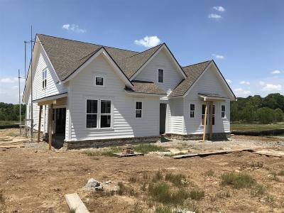 Mount Juliet Single Family Home For Sale: 503 Oakvale Ln