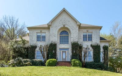 Williamson County Single Family Home For Sale: 1065 Stonebridge Park Dr