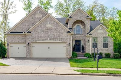 Mount Juliet Single Family Home For Sale: 2644 Lakeside Meadows Dr
