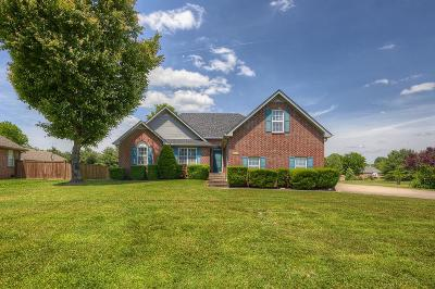Mount Juliet Single Family Home For Sale: 3295 Beckwith Rd