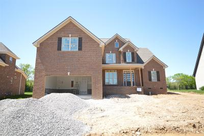 Spring Hill  Single Family Home For Sale: 3045 Elkhorn Place (28)