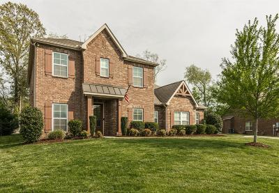 Sumner County Single Family Home For Sale: 123 Windmill Pointe Cir