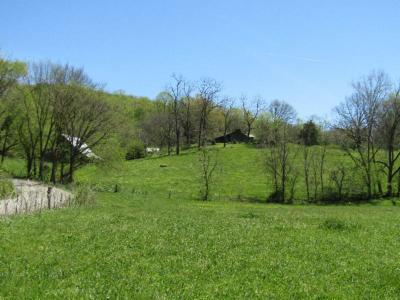 Residential Lots & Land For Sale: 1215 Rock Springs Church Rd
