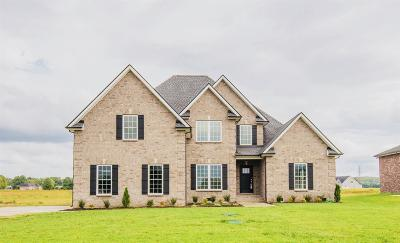 Rutherford County Single Family Home For Sale: 1517 North Side Dr