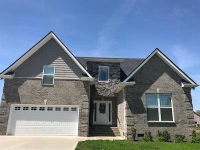 Murfreesboro TN Single Family Home For Sale: $319,000