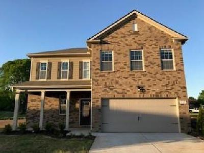 Rutherford County Single Family Home For Sale: 517 Hawk Cove #46