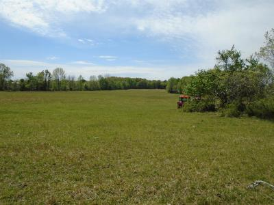 Greenbrier Residential Lots & Land For Sale: Washington Rd
