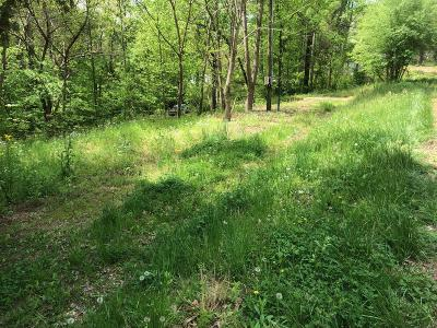 Clarksville Residential Lots & Land For Sale: 802 Shaw Drive