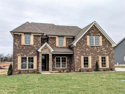 Murfreesboro Single Family Home For Sale: 2097 Trout Trail (Lot 27)