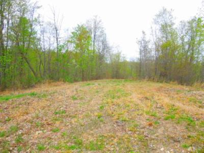 Residential Lots & Land For Sale: 15 .63ac Pleasant Cemetery Rd