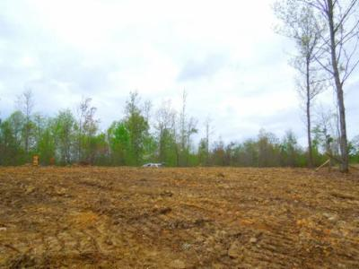 Residential Lots & Land For Sale: 31 .49ac Pleasant Cemetery Rd