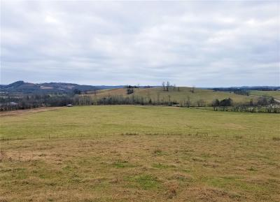Residential Lots & Land For Sale: 4 Hwy 64 Beechgrove