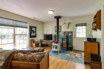 Pulaski Single Family Home For Sale: 1355 Mitchell Rd