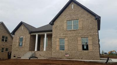 Spring Hill  Single Family Home For Sale: 213 Star Pointer Way