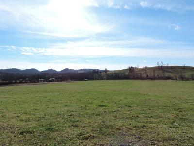 Residential Lots & Land For Sale: 6 Hwy 64 Beechgrove