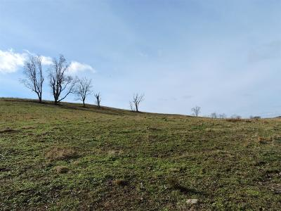 Residential Lots & Land For Sale: 8 Hwy 64 Beechgrove