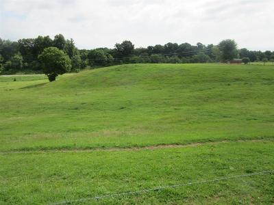 Residential Lots & Land For Sale: 2046 Old Snow Hill Rd