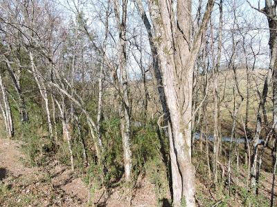 Residential Lots & Land For Sale: 9 Hwy 64 Beechgrove