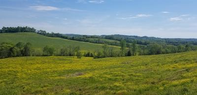 Residential Lots & Land For Sale: 10 Hwy 64 Beechgrove