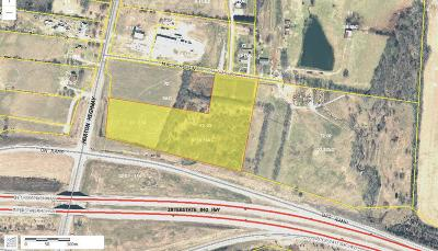 Williamson County Commercial For Sale: 8064 Horton Hwy