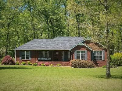 Smithville Single Family Home For Sale: 300 Big Rock Rd
