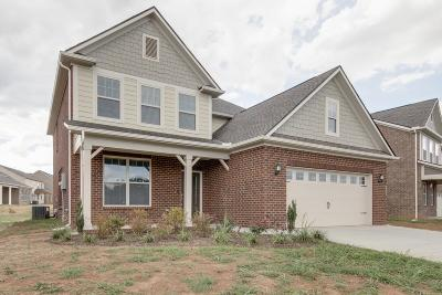 Murfreesboro Single Family Home For Sale: 3219 Rift Lane Lot 9