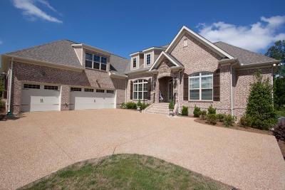 Nolensville Single Family Home For Sale: 1110 Millshed Drive