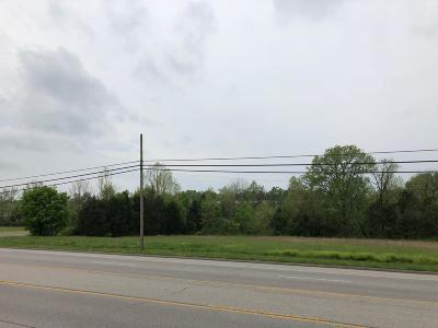 Sumner County Commercial For Sale: 704 Springfield Hwy