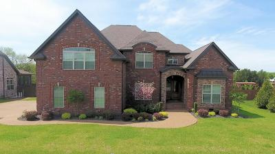 Mount Juliet Single Family Home Under Contract - Not Showing: 216 Bryson Place